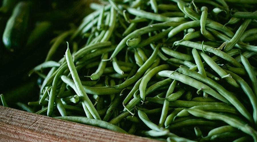 beneficios judias verdes salud 02