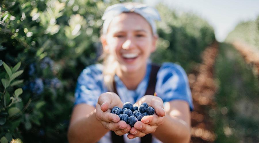 Mitos y leyendas de la fruta